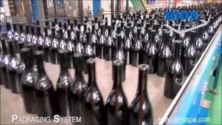 Линия упаковки стеклотары на машине АТ530 компании ОМС Италия